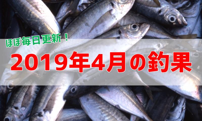 2019年4月の釣果情報